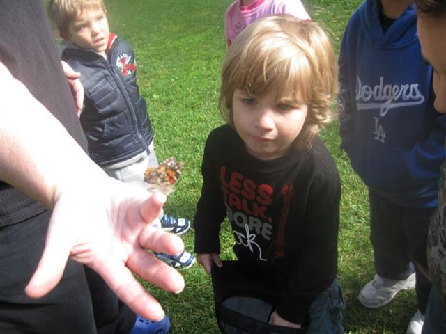butterfly-release-at-preschool-in-orange-ca-1