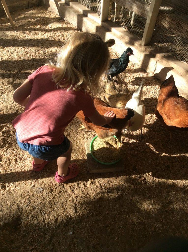 preschool in orange county