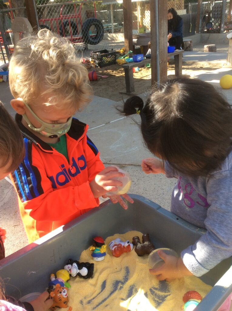 Toddlers playing in the sensory table