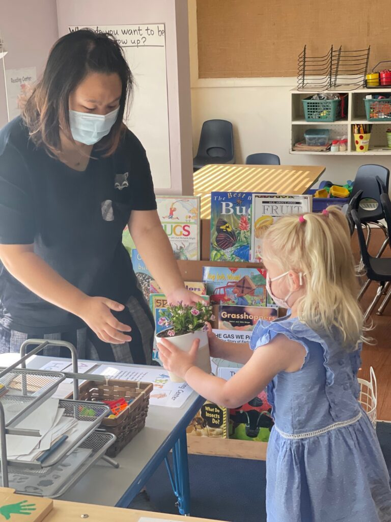 Orange Preschool Teacher Appreciation