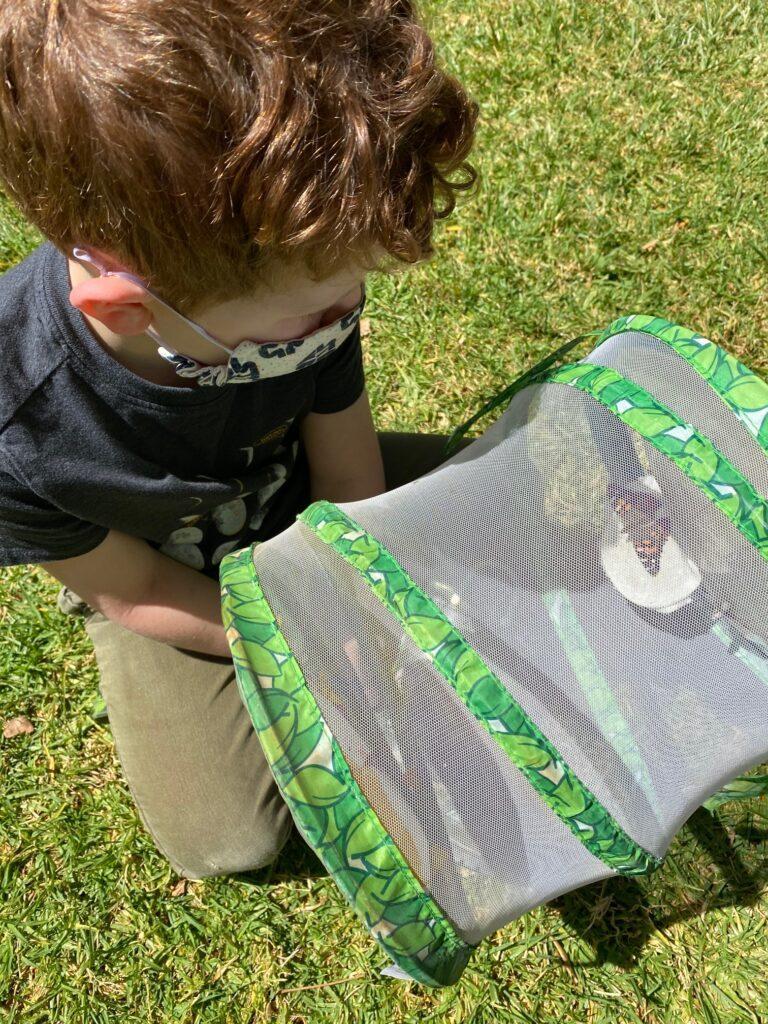 CV Preschool Earth Day
