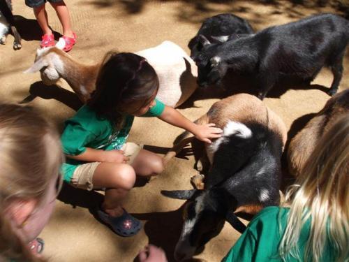 childrens village of orange preschool at irvine park field trip (4)